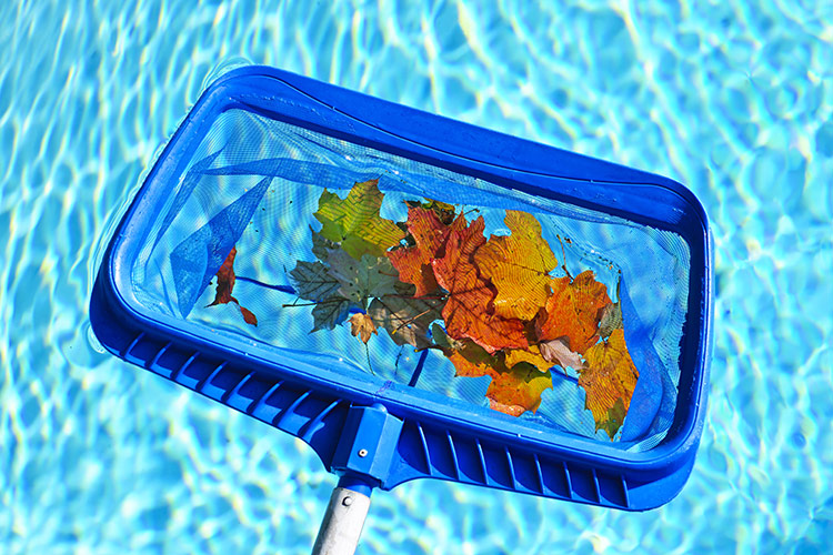 Pool Cleaning And Maintenance swimming pool cleaning - weekly pool cleaning service - spring